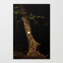 real tree 8 Canvas Print