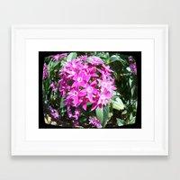 f1 Framed Art Prints featuring Lav F1 by Manuel Estrela 113 Art Miami