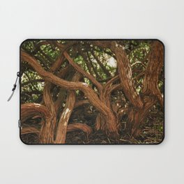 very old forest Laptop Sleeve
