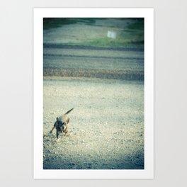 Rabid Chihuahua Art Print