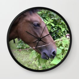 Tropical Island Horse Eating Leafy Lunch Wall Clock
