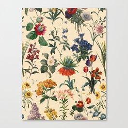 Secret Garden V Canvas Print