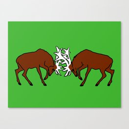 Deer fighting Canvas Print