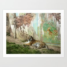 Tigers Play Art Print