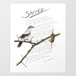 Hozier - Shrike Lyric Art Art Print