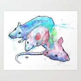 Rats Watercolor Sketch Art Print