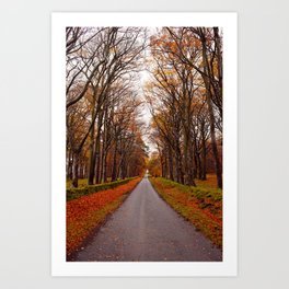 autumn road II Art Print