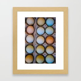 colorful eggs from southern Chile Framed Art Print