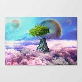spectator of worlds Canvas Print
