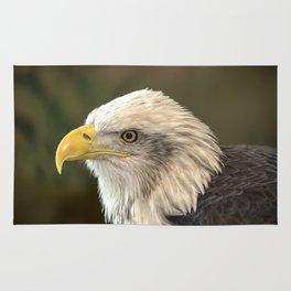 Columbia - Bald Eagle Rug