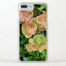 Autumn Kissed Plant Clear iPhone Case