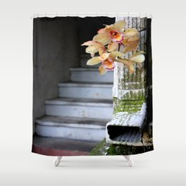 Delight From Up Above Shower Curtain