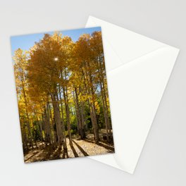 Autumn Blaze outside of Crested Butte, Colorado for #Society6 Stationery Cards