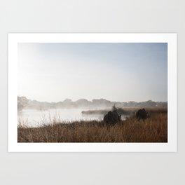 Saving Rhinos Art Print
