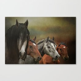 Wild & Free Back In the Day Canvas Print