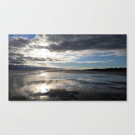 Gulls on the Sands Canvas Print