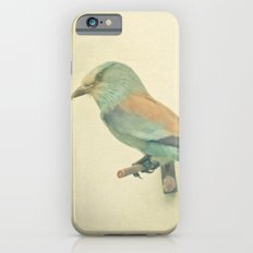 Bird Study #2 Slim Case iPhone 6s