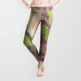Bungee Jumping Leggings