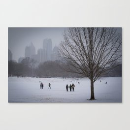 Southern Winter Canvas Print