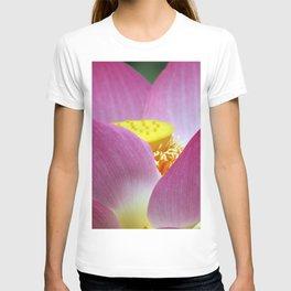 Peek-a-boo Beauty T-shirt