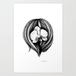 Orchidea Art Print