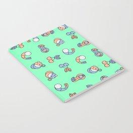 Pegacica Notebook