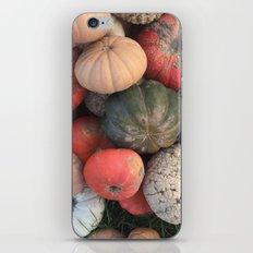 gourds. iPhone & iPod Skin