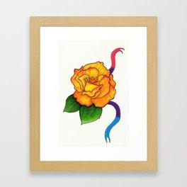 Pride Flowers: The Freddy Mercury Rose Framed Art Print