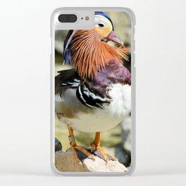 Unusual, Beautiful Duck Clear iPhone Case