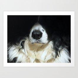 Dog close up Art Print
