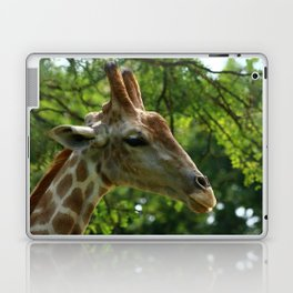 Giraffe Portrait Laptop & iPad Skin