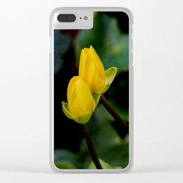 D. o.f. Clear iPhone Case