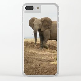 Elephant friends Clear iPhone Case