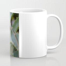 Aloe Vera Leaves  Coffee Mug
