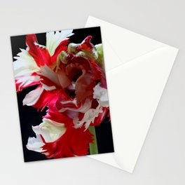 Parrot Tulip Stationery Cards