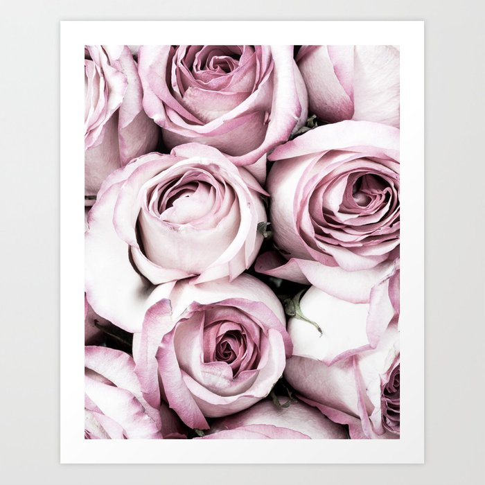 A Cascade of Perfectly Pink Roses Art Print
