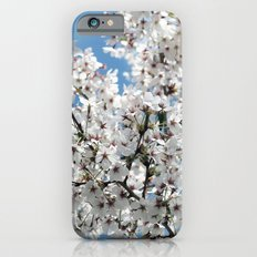 Hope Springs Eternal iPhone 6s Slim Case