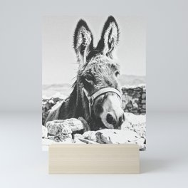 DONKEY Mini Art Print