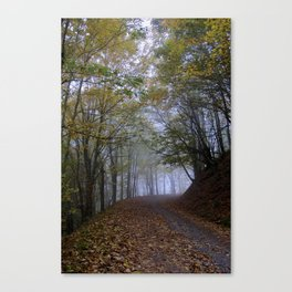 Fall in the Wolf Canvas Print