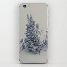Lost Inside a Snow Cloud iPhone & iPod Skin