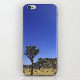 Sunbeams on a Cloudless Day iPhone Skin