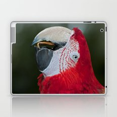 Red and Green Macaw Laptop & iPad Skin