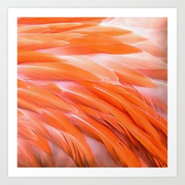 You Are What You Eat Flamingo Feathers Art Print