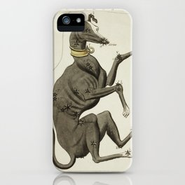 Canis Major, Lepus, Columba Noachi and the Cela Sculptoris iPhone Case