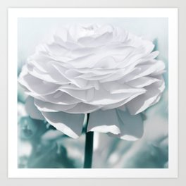 White flower 195 Art Print
