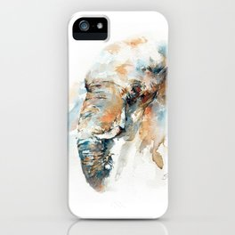 Colours of Samburu iPhone Case