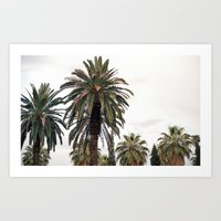 palms Art Prints featuring PALMS by N A T