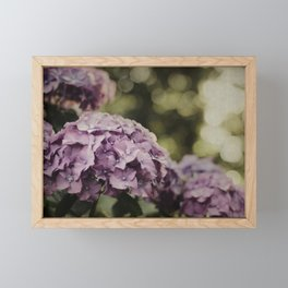 Purple Hydrangea Framed Mini Art Print