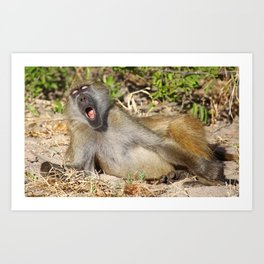 Just sooooo tired - Africa wildlife Art Print
