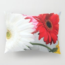 Happiness as a Group Pillow Sham